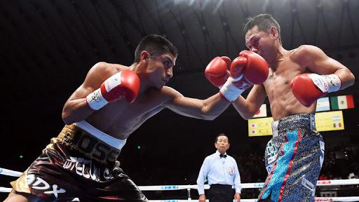 WBA ordered Argumedo-Rojas Minimumweight title negotiations